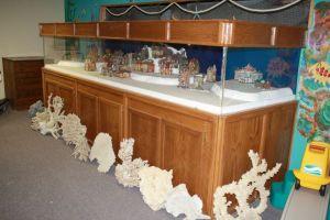 800 gallon fish tank aquarium 5000 clarkston giant for Fish house for sale craigslist