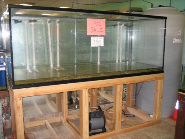 550 gal aquarium with stand and filter 999 monterey for Craigslist fish tank