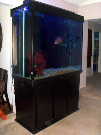300 Gallon Custom Fish Tank Aquarium 700 Haltom City