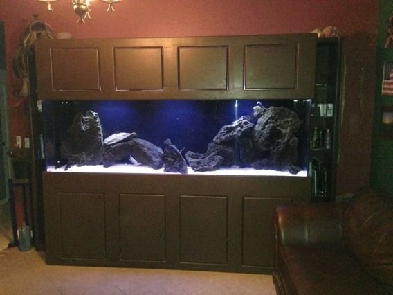 Home oceanic 14 gallon biocube aquarium w stand book covers for Craigslist fish tank