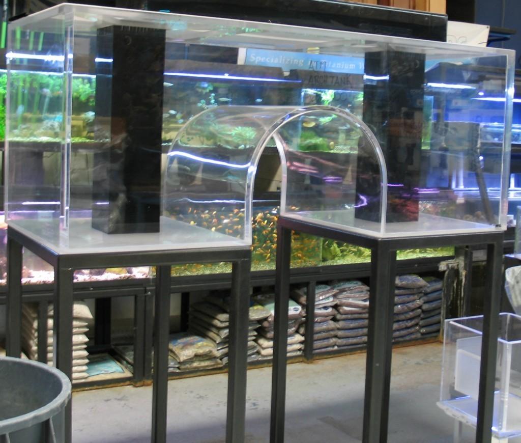 Custom 6ft Acrylic Arch Aquarium Giant Aquariums
