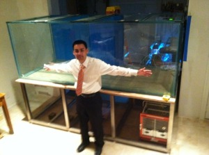 90 Gallon Aquarium For Sale Craigslist 2017 Fish Tank
