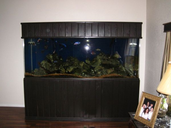 Huge Custom 450 gallon Acyrlic Tank – $2500 (Spring Hill ...