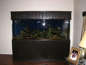90 gallon aquarium for sale craigslist 2017 fish tank for Craigslist fish tanks
