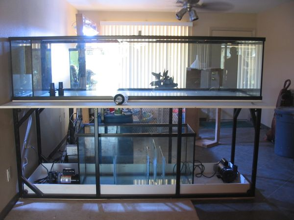 300 gallon peninsula reef aquarium 700 dobson elliot for 300 gallon fish tank