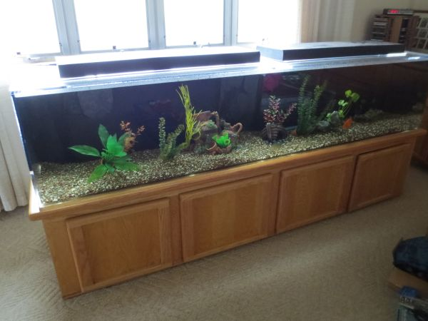 300 gallon seaclear system 2 aquarium 4000 koloa for 75 gallon fish tank dimensions