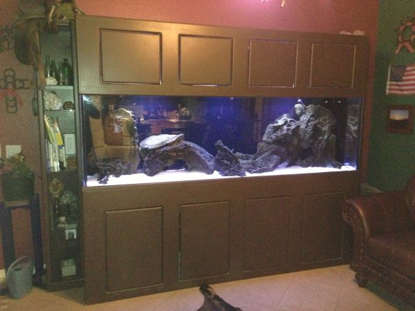2013 giant aquariums page 14 for Fish tank craigslist