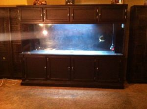 300 gallon aquarium – $1300 (Stockton) – giant aquariums