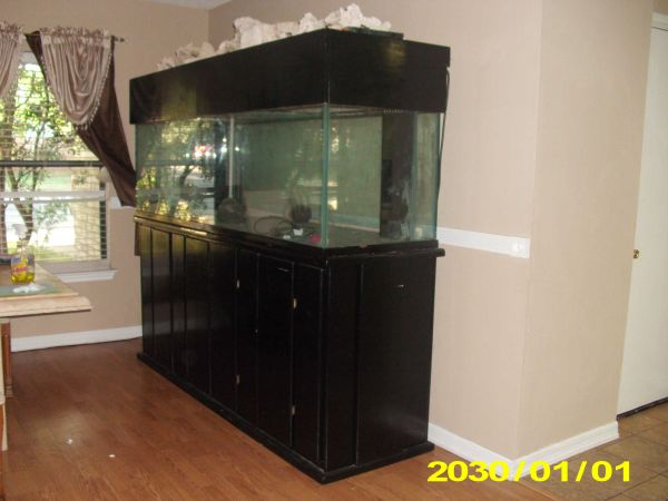 aquarium fish tank large 300 gal u2013 ne san antonio & Fish Tank Stands With Canopy. . . 100 Gallon Truvu Acrylic ...