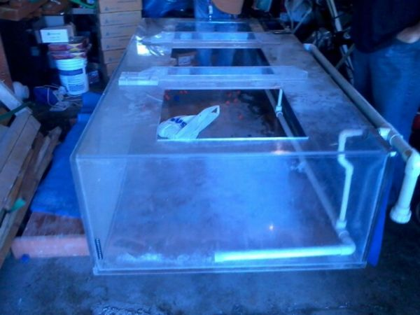 500 gallon aquarium bing images. Black Bedroom Furniture Sets. Home Design Ideas