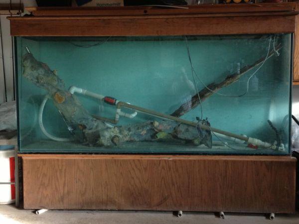 75 gallon aquarium for sale craigslist 2017 fish tank for 300 gallon fish tank for sale