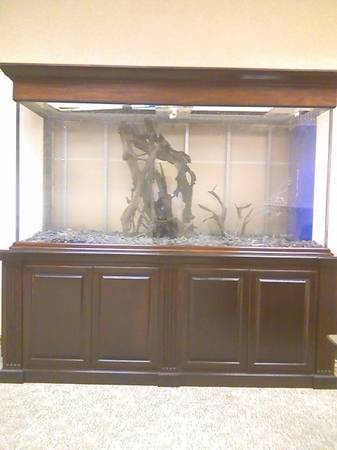 custom made extra large fish tank great for a showroom