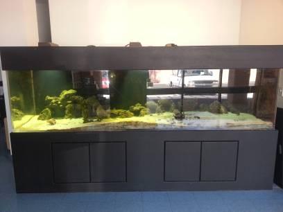 Huge salt water aquarium 10 foot 570 gallon 4400 for 100 gallon fish tank for sale