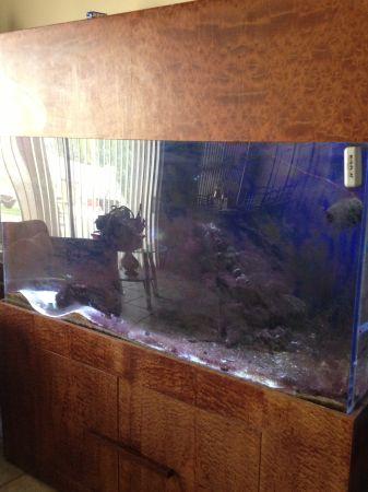 300 gl aquarium 2000 continental ranch az giant for 150 gallon fish tank for sale craigslist