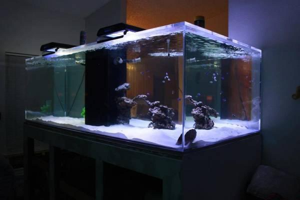 March 2013 Giant Aquariums