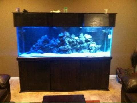 800 Gallon Aquarium For Sale Huge 240 Gallon Aquarium