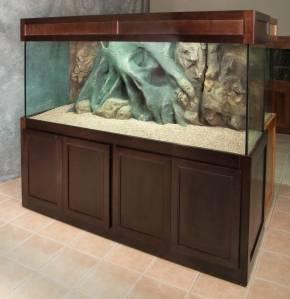 aquarium14
