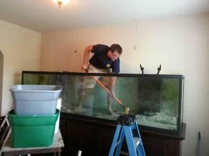 480 Gallon Aquarium Set Up 10000 Near The Woodlands