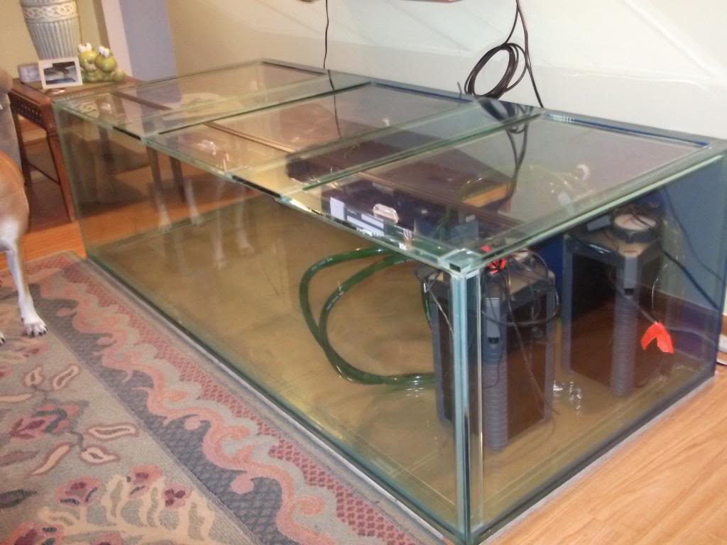 2013 page 9 giant aquariums for Used 300 gallon fish tank for sale