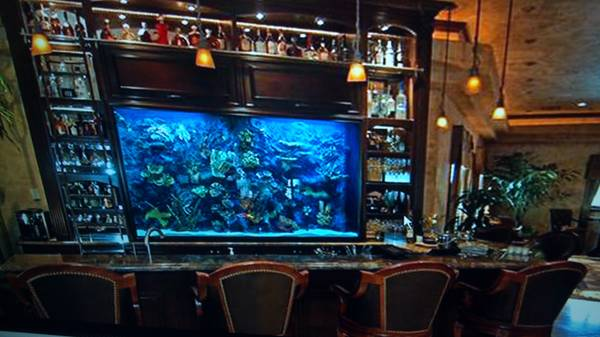 300 Gallon Custom Acrylic Saltwater Aquarium 2500