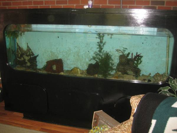 Giant aquariums tanks 300gal by trifisher page 3 for Free fish tanks craigslist