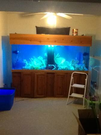 Giant Aquariums Tanks 300gal By Trifisher Page 3