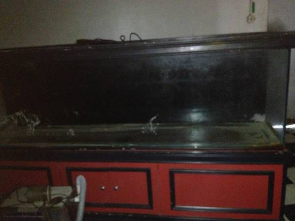 Giant aquariums tanks 300gal by trifisher for Used fish tanks for sale on craigslist