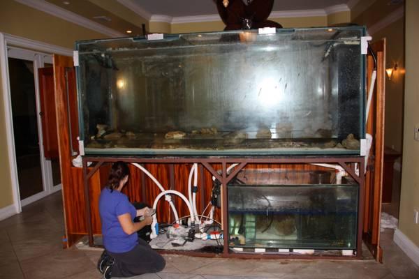 631 gallon custom fish tank 20000 usa giant aquariums for Used 300 gallon fish tank for sale