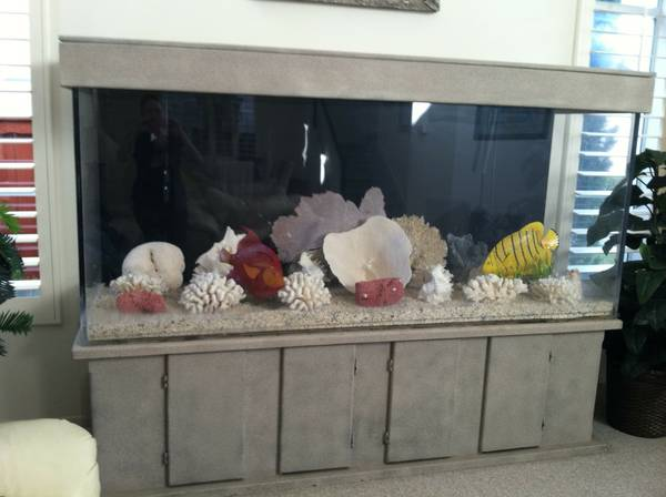 20 gallon aquarium craigslist 106 kb jpeg fish tank for for 150 gallon fish tank for sale craigslist