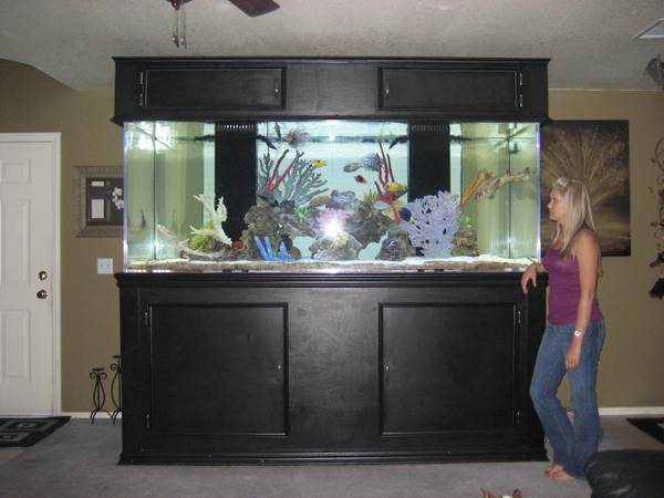 2013 giant aquariums for 300 gallon fish tank
