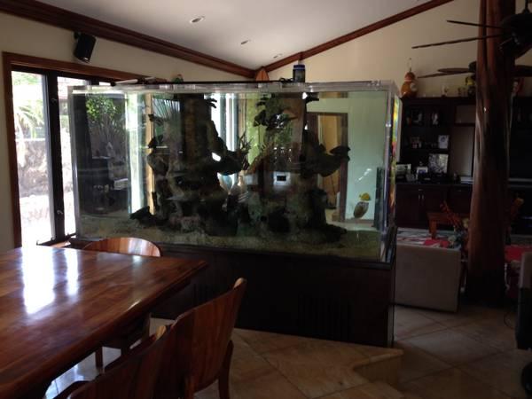 1000 gallon saltwater aquarium – $20000 (Oahu, Hawaii ...