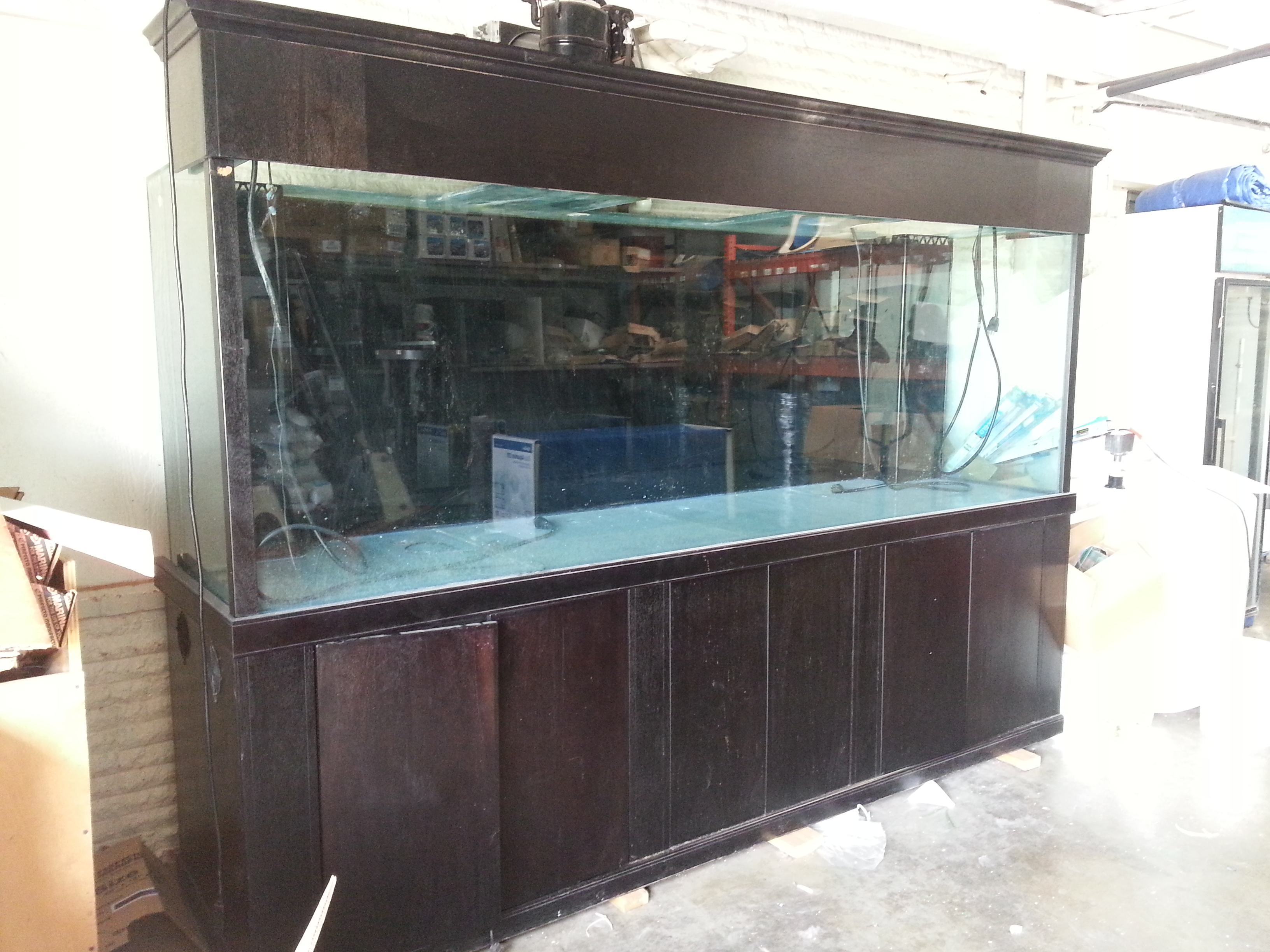 Giant aquariums tanks 300gal by trifisher page 12 for 10 gallon fish tank for sale