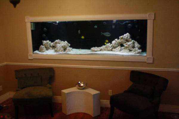 Reef Aquarium Set Up 500 gallon system! - $2500 (st. george Ut)