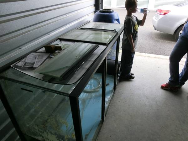 giant aquariums | Tanks 300gal.+ by Trifisher | Page 23