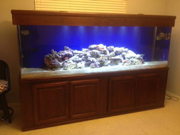 350 gal aquarium - $3500 Phoenix,AZ