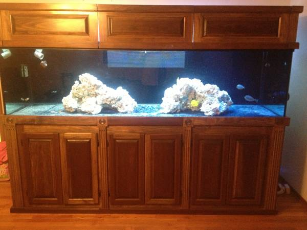 Saltwater aquarium 350 gallon custom - $2500 (Mobile AL)