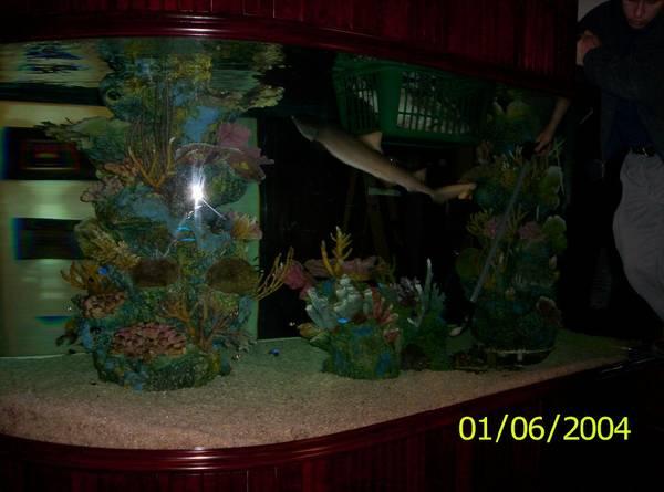 1800 gal shark aquarium - $25000 (beaverton,OR)