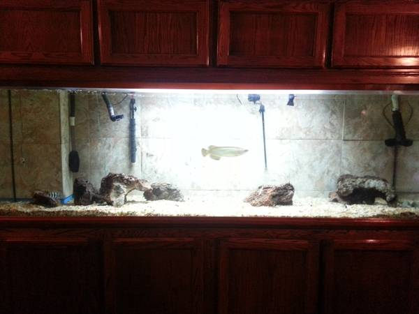 300 Gallon TruVu Fish Tank For Sale (Reduced!) - $1600 SF bay area