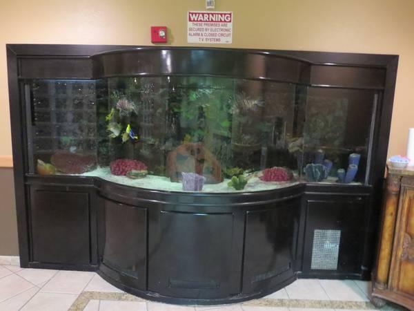 1000 gallon salt water aquarium fully loaded 5000 for Fish tank las vegas