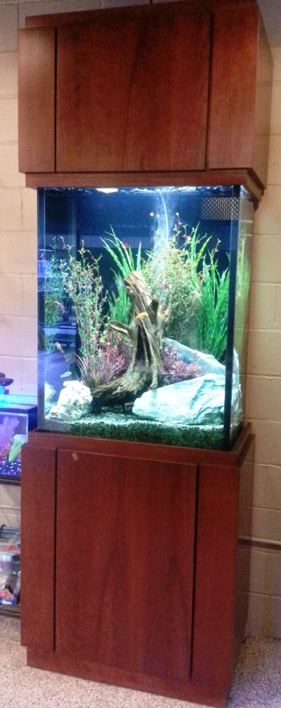 "100 gallon freshwater, 30"" x 18"" x 42"", L x W x H with custom Contemporary Stand and Full Upper Cabinet"