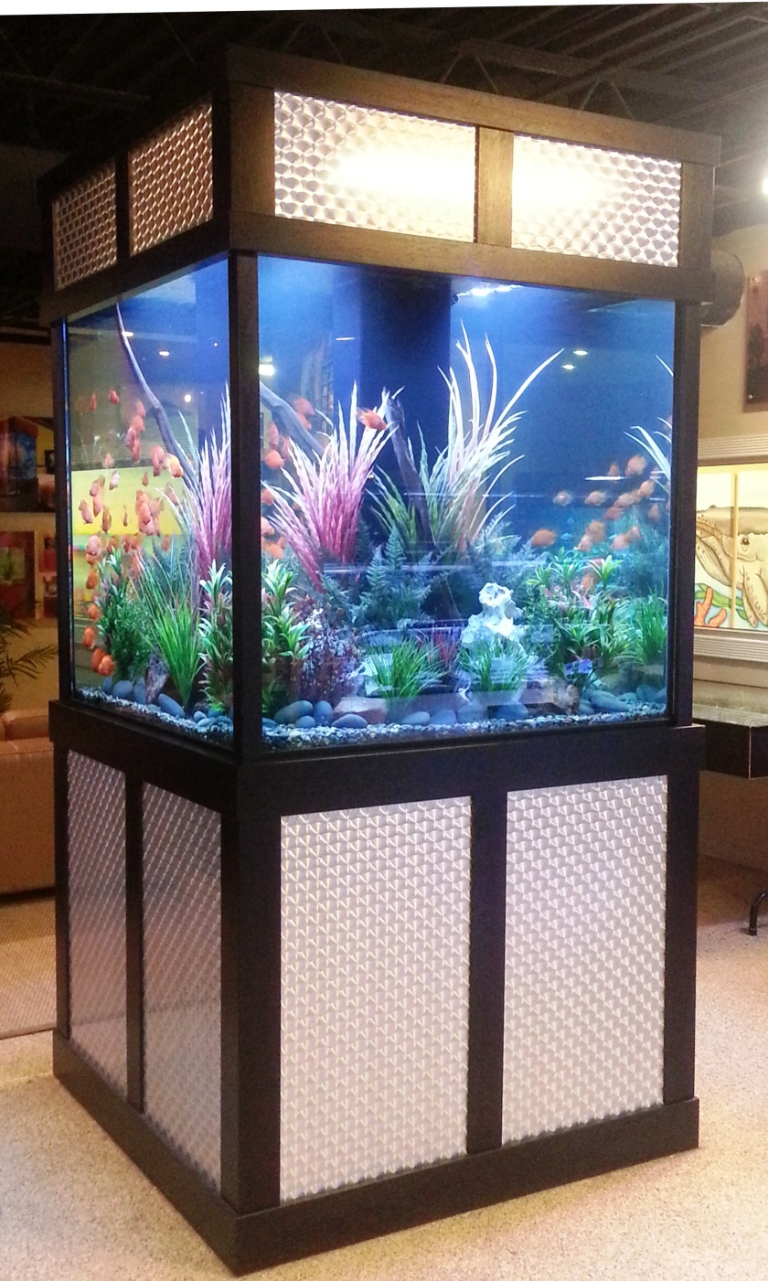 "475 gallon freshwater, 48"" x 48"" x 48"", L x W x H with custom Swirl Brushed Stainless Steel with Black Highlights Stand and Canopy(Dallas,Tx.)"