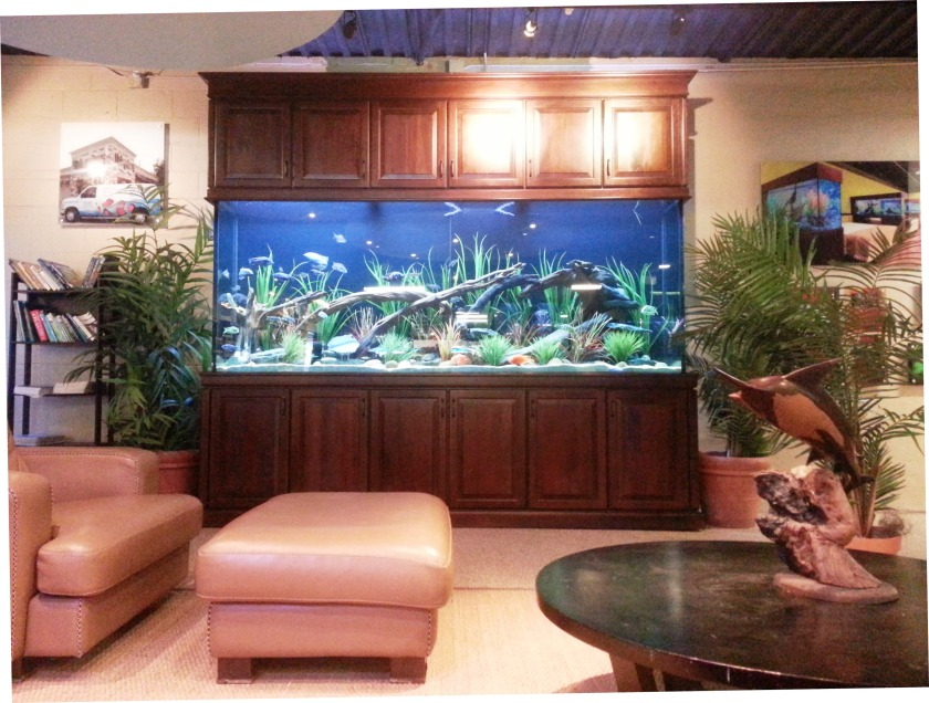 "600 gallon freshwater, 120"" x 24"" x 48"", L x W x H with custom Traditional Style Stand and Full Upper Cabinets(Dallas,Tx.)"