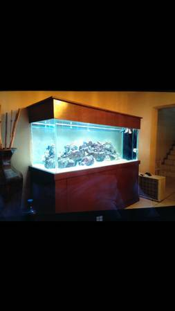 300 gallon salt water fish tank - $3500 (miami, fl)