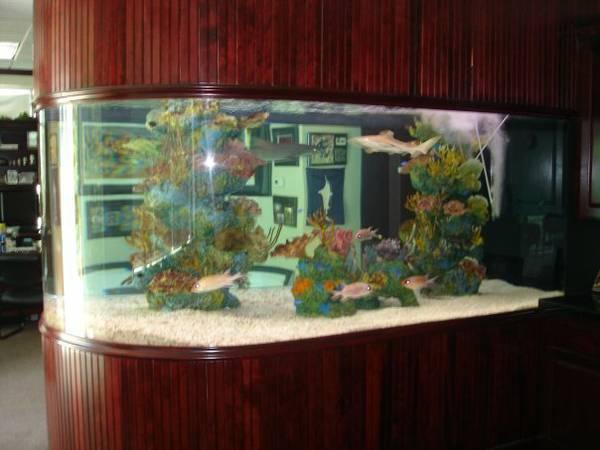 2000 gallon Shark Aquarium System - $20000 (portland )