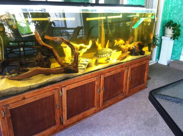 300 gal. TruVu aquarium & stand - $1000 (fremont / union city / newark, CA)
