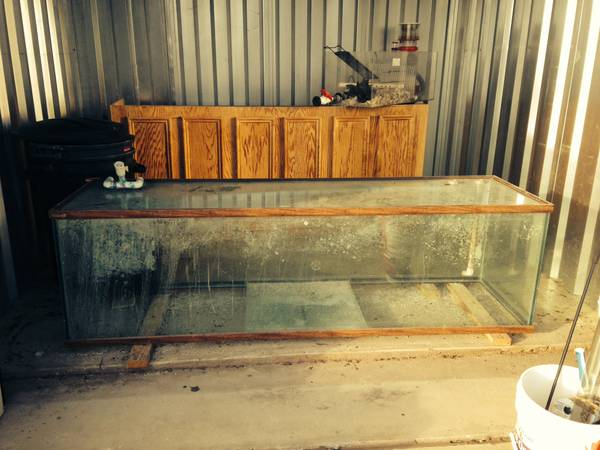 Aquarium (huge salt water) - $1500 (Bastrop, Tx)