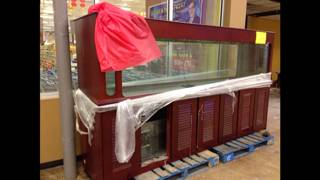 400 Gallon salt water aquarium Tank - $2200 (Grand Prairie, Texas)