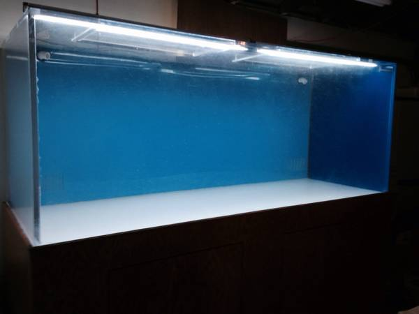 Acrylic 540 Gallon aquarium - $3500 (Midway city,CA)