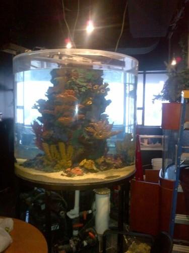Aquarium 500 Gallon Cylinder Acrylicaquarium 500 Gallon