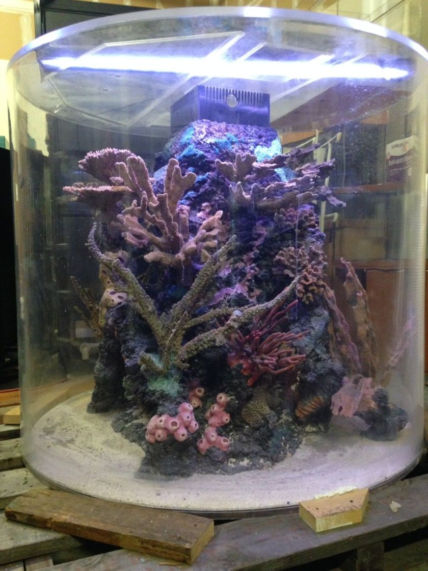 Custom 700 Gallon Cylinder Aquarium by ATM with Reef Insert